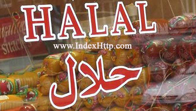 Persian website for Malaysian companies persian website Persian website for Malaysian companies halal market