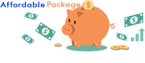 Affordable SEO Website package: FREE Domain name + FREE Hosting + 5 pages: (Home page - About page + Galley + Product or Service page + Contact page) + SEO Service + FREE SSL